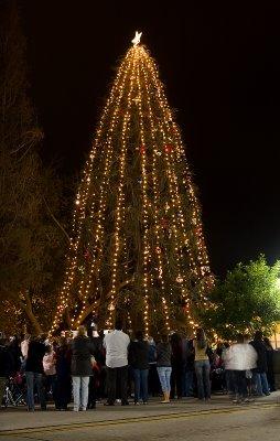 2007_Christmas_Tree_Lighting